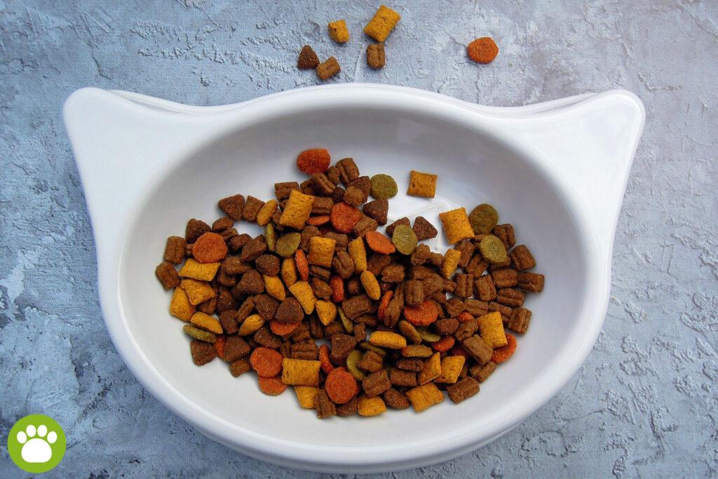 Miseczki ceramiczna dla kota